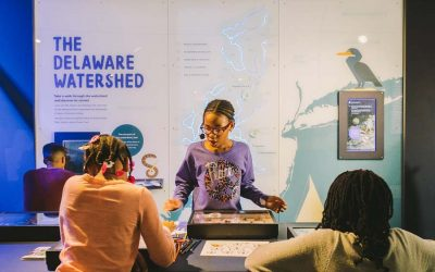 Guests looking at an exhibit for the Delaware Watershed at The Independence Seaport Museum